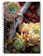 Succulents Spiral Notebook