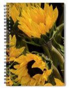 Sunflower Power Spiral Notebook