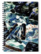 The Brook, Nova Scotia Spiral Notebook