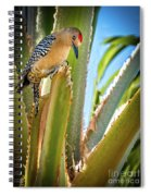 The Gila Woodpecker Spiral Notebook