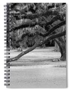 The Giving Tree Spiral Notebook