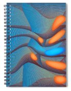 The Seventh Opinion Spiral Notebook