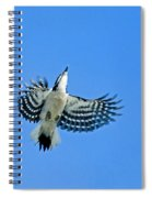 The Sky Is My Limit Spiral Notebook
