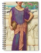 The Tambourine Girl Spiral Notebook