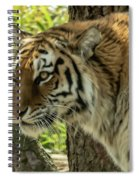 Tiger Spiral Notebook