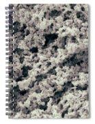 Tofu Sem Spiral Notebook