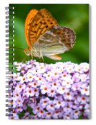 Tramonti Butterfly Spiral Notebook
