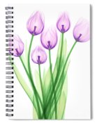 Tulips, X-ray Spiral Notebook
