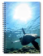 Turtles View Spiral Notebook