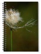 Tussock Cottongrass Spiral Notebook