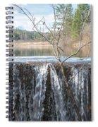 Vermont Swamp Spiral Notebook