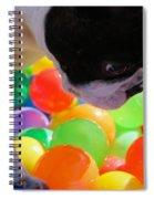 Vibrant Life Spiral Notebook