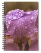 Vintage Iris Spiral Notebook