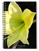 Welcome Spring Spiral Notebook