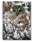 What A Hoot Spiral Notebook