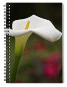 White Calla Spiral Notebook