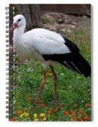 White Stork Spiral Notebook