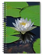 2- White Water Lily Spiral Notebook