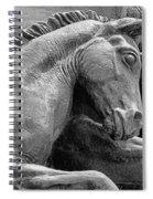 Wild Mustang Statue I V Spiral Notebook