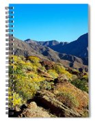 Wildflowers On Rocks, Anza Borrego Spiral Notebook