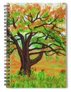 Willow Tree, Painting Spiral Notebook