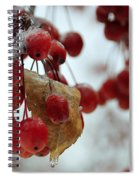 Winter Berries Spiral Notebook