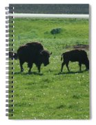 Wisconsin Buffalo Spiral Notebook