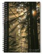 Sunburst Rainbow Spiral Notebook
