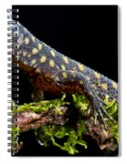 Yellow Spotted Tropical Night Lizard Spiral Notebook