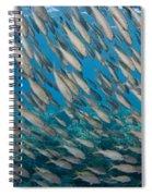 Yellowfin Goatfish Spiral Notebook
