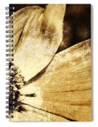 Yesterday's Flower Spiral Notebook