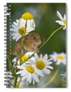 Young Eurasian Harvest Mouse Spiral Notebook