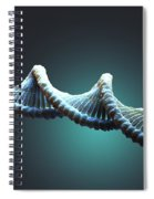 Dna Structure Spiral Notebook