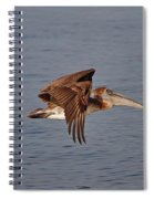 20- Pelican Spiral Notebook