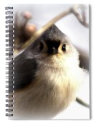 2000-001 - Tufted Titmouse Spiral Notebook