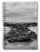 2005 Pura Acqua #02 Spiral Notebook