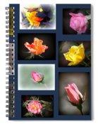 2014-03-16 - Rose Spiral Notebook
