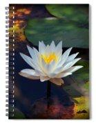 2015 04 26 03 0020 Spiral Notebook