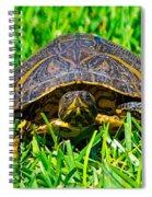 2015 05 03 01 B 1 _0181 Spiral Notebook