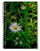 2015 08 23 01 A Flower 1106 Spiral Notebook