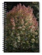 2015 Note Di Autunno Spiral Notebook