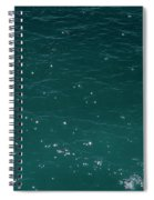 2017 Mar Ligure #17 Spiral Notebook