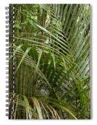Jungle 97 Spiral Notebook