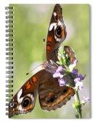 2065 - Butterfly Spiral Notebook