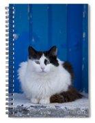 Cat On A Greek Island Spiral Notebook