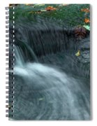 260 Olmsted Falls Spiral Notebook