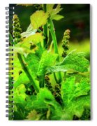 2629- Comsrock Winery Spiral Notebook