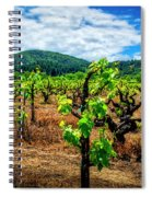 2638- Coffaro Vineyard Spiral Notebook