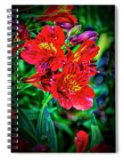 2647- Red Flowers Spiral Notebook