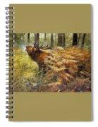nature Rien Poortvliet Spiral Notebook